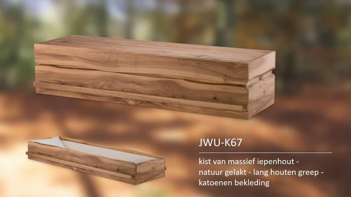 Kist van massief iepenhout natuur gelakt