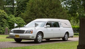 Vervoer Cadillac wit