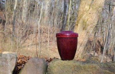 Eco-urn